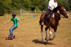 horse-boarding_2