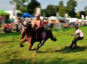 horse-boarding_3