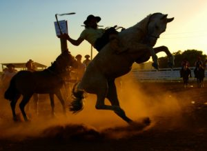 rodeo_sport