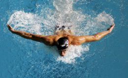 Butterfly_Swimming
