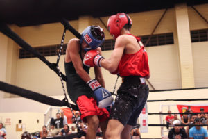 amateur_boxing
