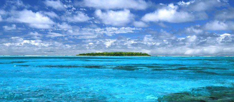 Океан — богатый подводный мир