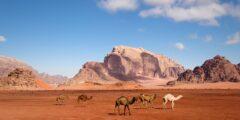 Лучшие туристические направления Иордании – пустыня Вади-Рам