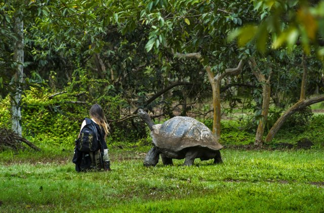 Экотуризм, как одно из развивающихся направлений.