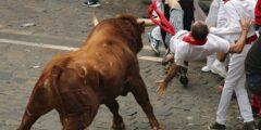 Ежегодный традиционный бег от быков