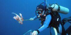 Экстремальное путешествие для любителей подводной охоты на Соломоновы острова
