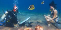 Аквастенд (Aquastand) – рисование под водой!