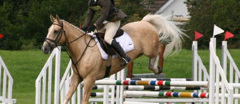 Конный прыжок в длину (древний вид спорта)