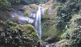 Водопады и бабочки Коста-Рики