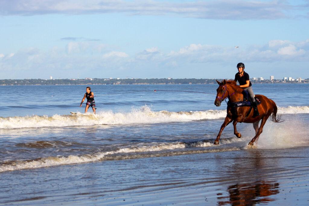 Конный серфинг (Horse surfing)