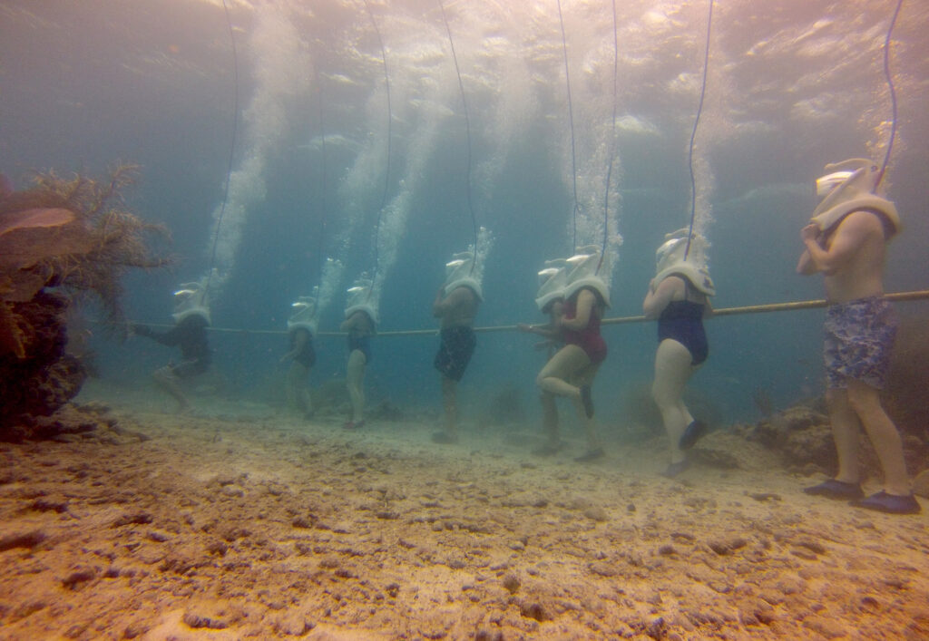 Морской треккинг (Seatrekking)