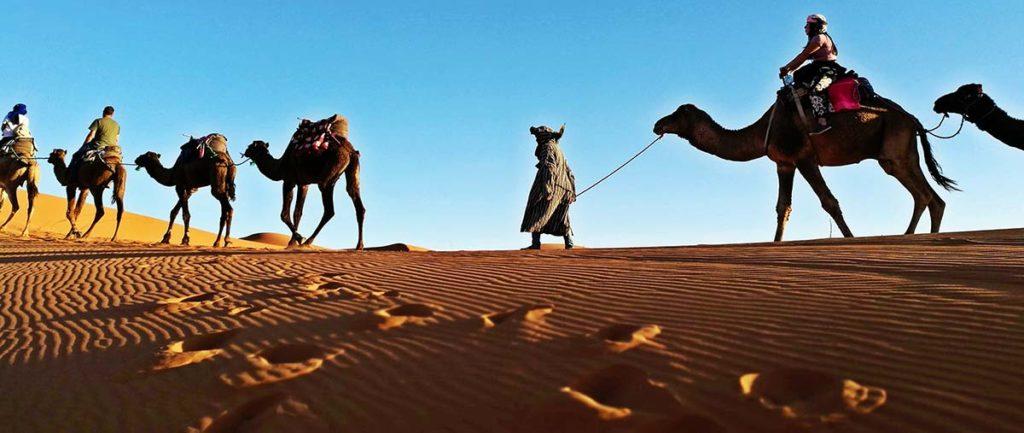 Азарт и приключения: экзотический туризм