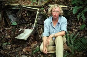 Выжившая в авиационной катастрофе Джулиана Маргарет Кёпке (Juliane Margaret Koepcke)